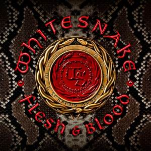 whitesnake flesh blood